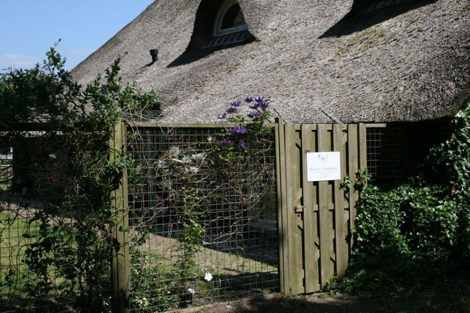 De ingang van MyBliss Nagelstudio voor het tuinhek kun je parkeren